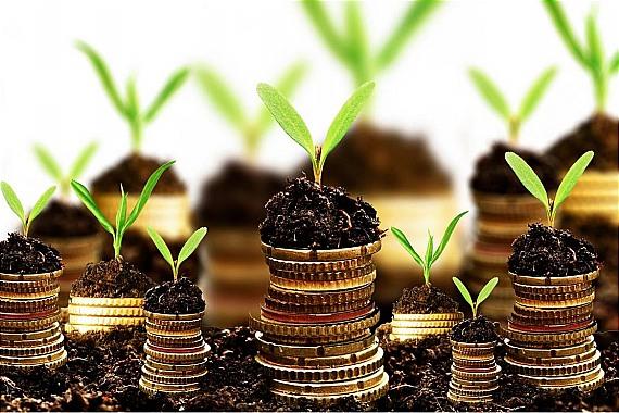 Invest like a Pro 001 - ۸ قانون برای یک سرمایه گذاری موفق