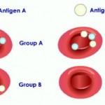 شخصیت شناسی از روی گروه خونی