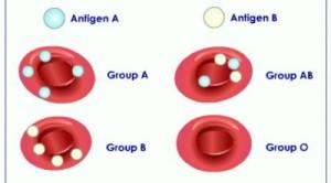 گروه خونی و شخصیت