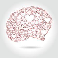 دانستنی هایی در مورد مغز