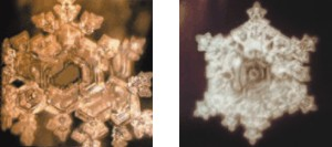 شکل 10 و 11- تاثیر موسیقی پاستورال از بتهوون بر روی آب ( شکل 10) آهنگ «هوا برای ردیف جی» از باخ ( شکل 11)