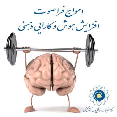 هوش و کارایی ذهنی 2-2