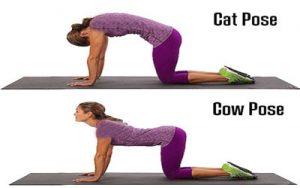 کاهش استرس و بالا بردن قدرت با حرکات یوگا